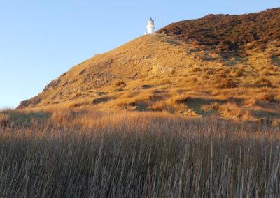 Cape Brett Lighthouse (2)